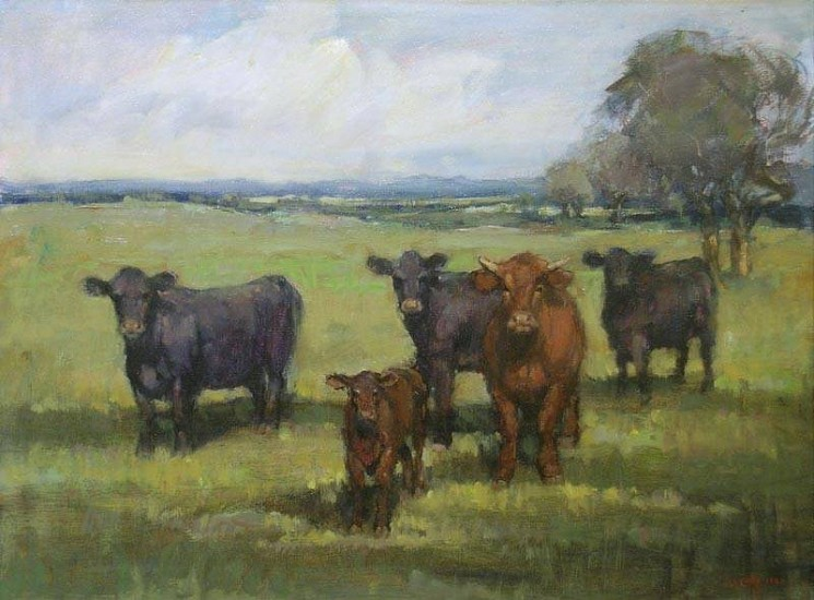 Don Ealy, Cows oil on canvas