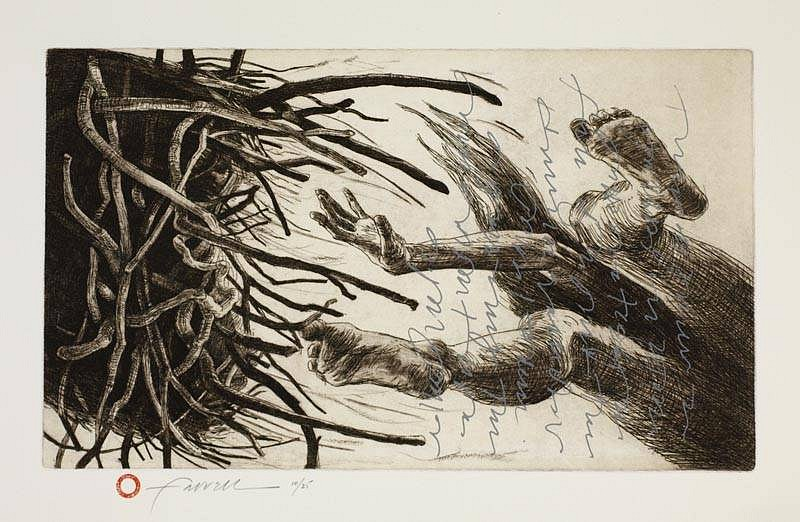Mary Farrell, Tossed II 2012, etching, screen print