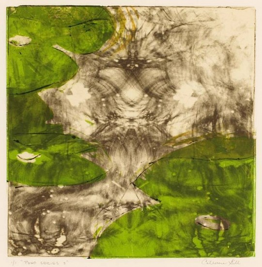 Catherine Gill, Pond Series III 2008, monotype & etching