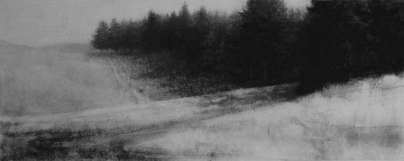 Elaine Green, Two Crops 2010, charcoal on paper