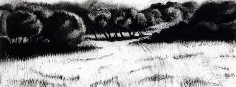Katherine Nelson, Battlefield of Waterloo 2007, charcoal