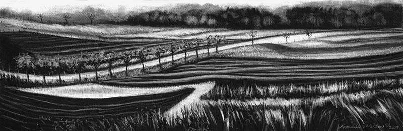 Katherine Nelson, Spring Farmland 2009, charcoal & pastel
