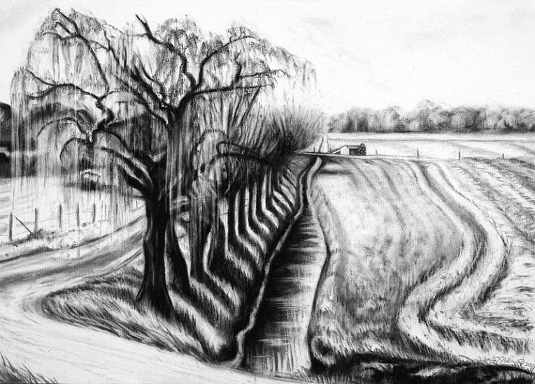 Katherine Nelson, Holland Canal Path 2009, charcoal
