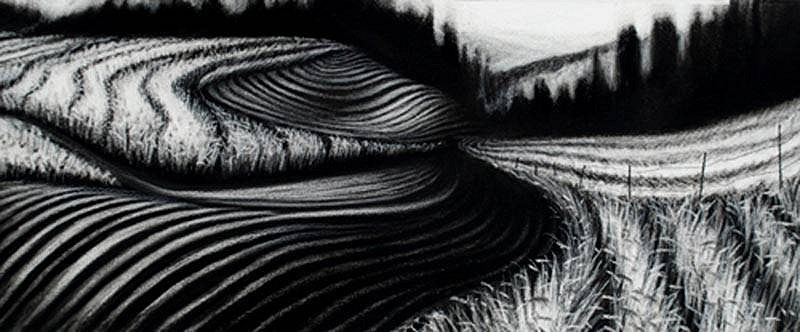 Katherine Nelson, Plowed Field, Matured Wheat 2009, charcoal & pastel
