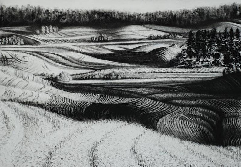 Katherine Nelson, Summer Bliss 2011, charcoal on paper