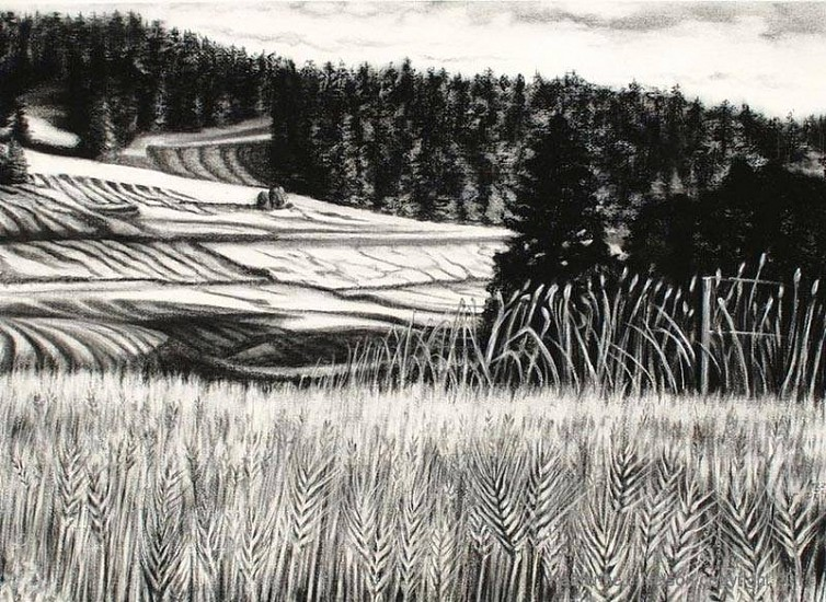 Katherine Nelson, Knee Deep in Wheat 2011, charcoal & tinted pastel on paper