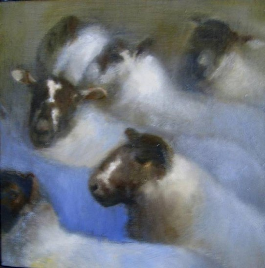 Claudia Pettis, Sheep the Color of Clouds 2008, oil on linen