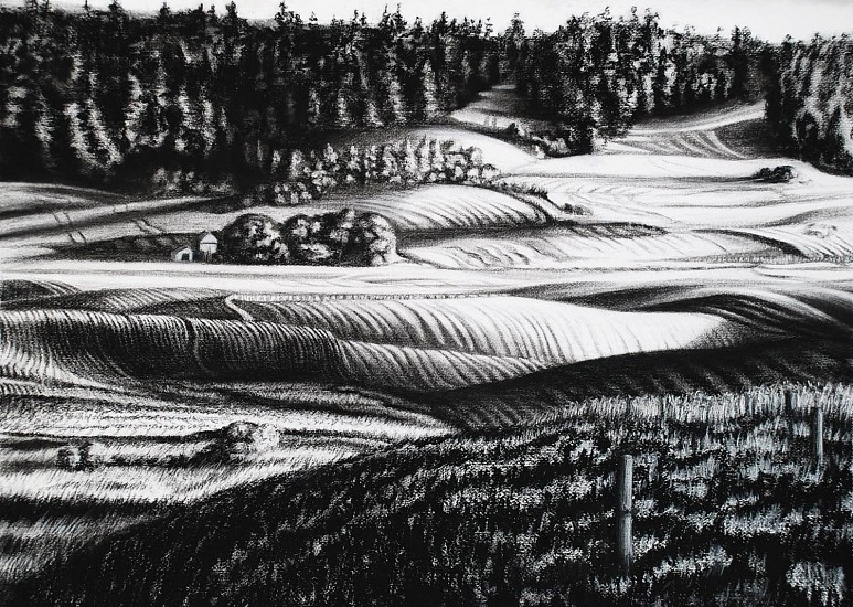 Katherine Nelson, Up the Hill in Wheat 2011, charcoal & pastel on paper