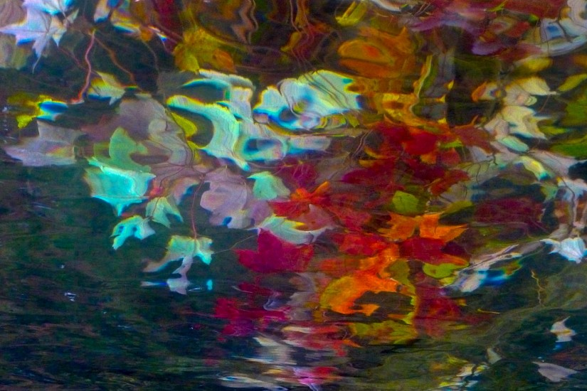 Barbara Mueller, A Fall Gathering 2013, archival print on metallic paper