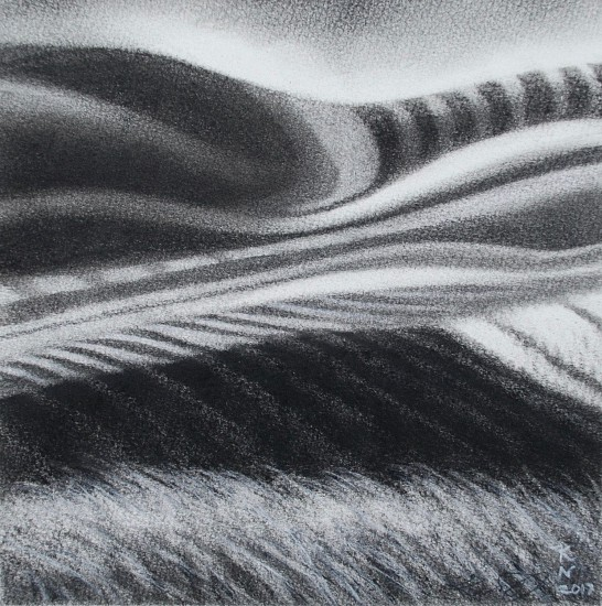 Katherine Nelson, The Curve 2017, charcoal on paper on panel
