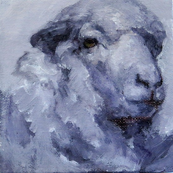 Claudia Pettis, The Light of Winter Series - White Sheep 2017, oil
