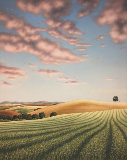 Doug Martindale, Canola Fields 2020, chalk pastel on archival paper